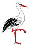 lépkedő gólya